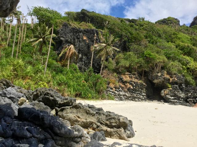Jungle-clad beach