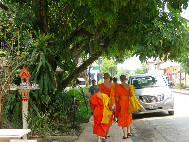 Monks just a strollin'